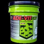 ADE-VIT CAV