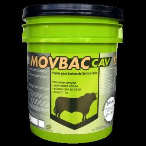 MOVBAC CAV