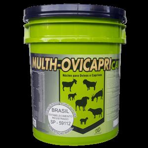 MULTH-OVICAPRI CAV